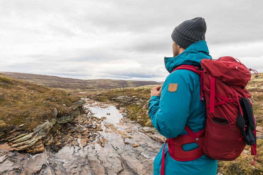 Fjallraven marco ronconi norway dovrefjell tundra nature willdife natura norvegia fotografia naturalistica