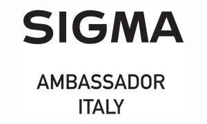 logo ambassador
